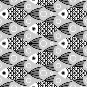 finned fish : grey