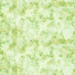 Watercolor Texture Light Green