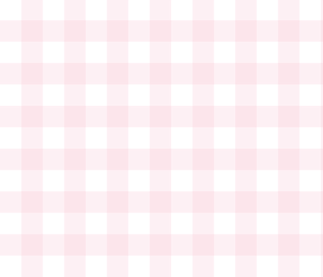 Pretty in Pink Gingham fabric by esbrosig on Spoonflower - custom fabric