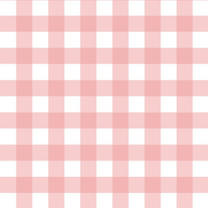 Soft Rose Gingham