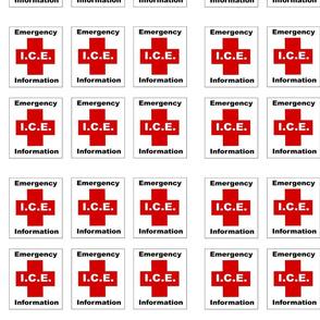 ICE Emergency Information Logo