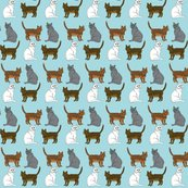 Rfour_kitties_b_shop_thumb