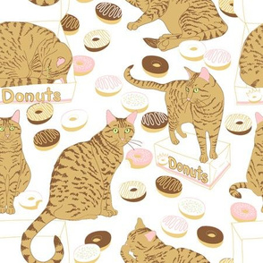Cats & Donuts