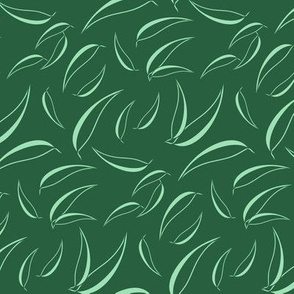 Eucalyptus - Dark Manzanita