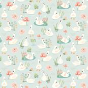 Curious Swans