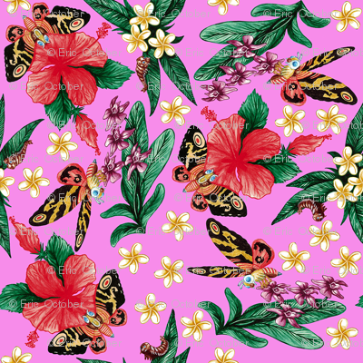 Rtropical_mothras_pink_preview