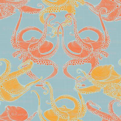 Cephalopod - Octopi smaller - Tropical