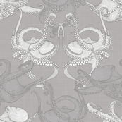 Cephalopod - Octopi smaller - Grey