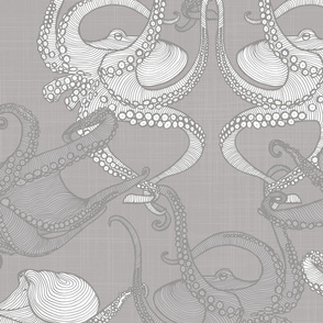 Cephalopod - Octopi - Grey