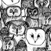 Rrjust_owls_black_white_st_sf_07052016_99_shop_thumb