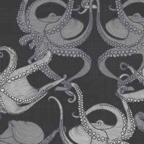 Cephalopod - Octopi - Mono