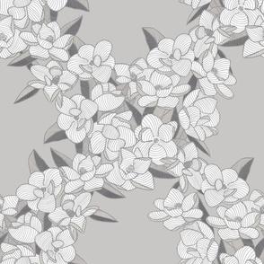 Magnolia Story Main - Grey