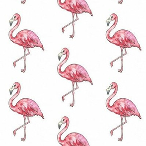 watercolour flamingo