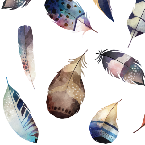 Watercolor feathers fabric by buckwoodsdesignco on Spoonflower - custom fabric
