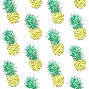 watercolour pineapple