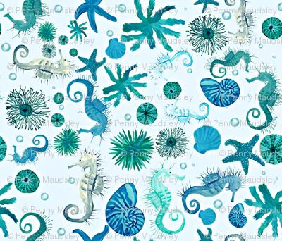 DITSY SEA