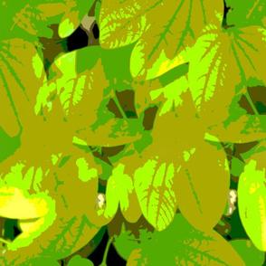 Leaf_transform_01