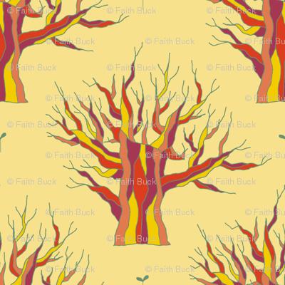 Elder (Eternal Sunshine)