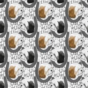 Shih Tzu horseshoe portraits