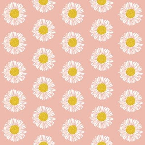 daisy daisies soft pink girls sweet painted flowers florals vintage colors
