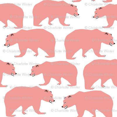 bear bears pink kids sweet bears pink bears for girls