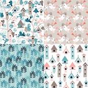 Birdfamilytree-coordinates3a_shop_thumb
