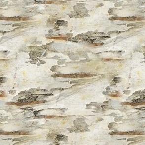 birch bark I