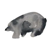 cestlaviv_pals_blackbear