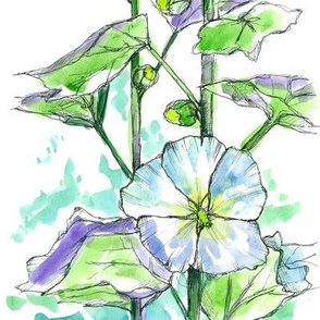 White Hollyhocks