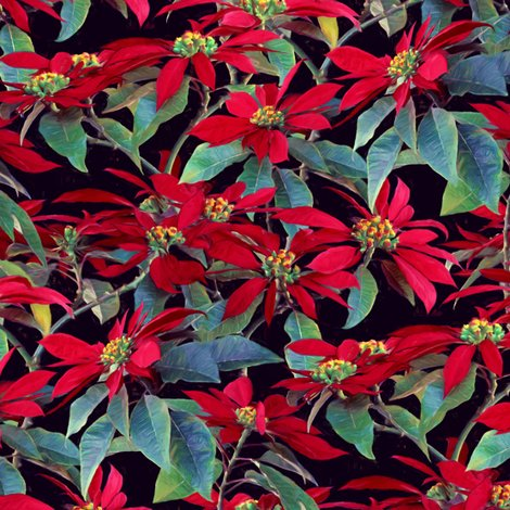 Rrpoinsettia_pattern_base_flat_spoonflower_shop_preview