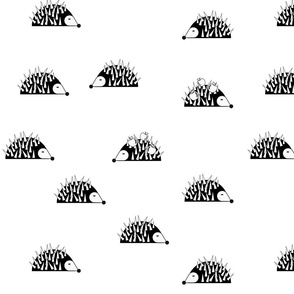 Hedgehogs - monochrome || by sunny afternoon