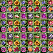 Gardensquares_shop_thumb