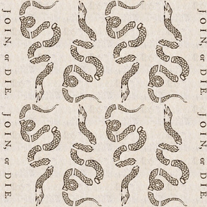 Join Or Die Border Print