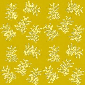 DelicateFern_II_Mustard