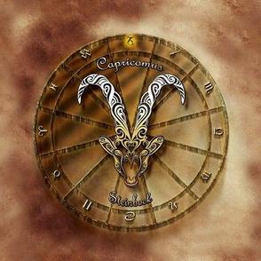 capricorn 1 - ibex