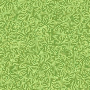 extra-large petoskey pattern in spring green