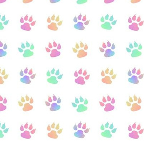 Cats Paw with Claws Rainbow on White