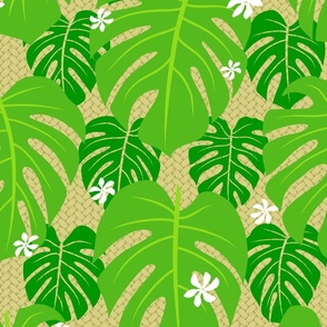 Monstera Tiare Palm Weave