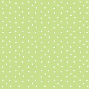 Polka Dots-kiwi/white-PD collection