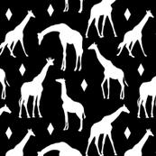 Geo Giraffes on Black