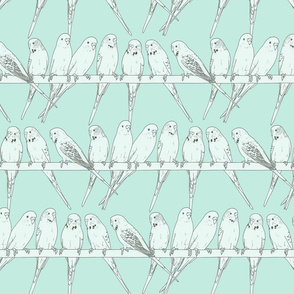 Budgies Monochrome blue - larger scale