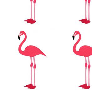 Pink Flamingo Deluxe