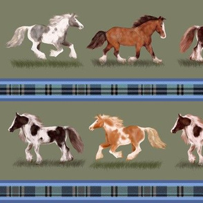 Gypsy Vanner Horse Stripe