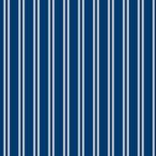 Hp_double_stripes_ravenmovie-01_shop_thumb