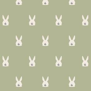 Rabbits Dots - Rabbit relatives COLLECTION