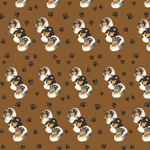 Collies with a Tan Background with paw prints