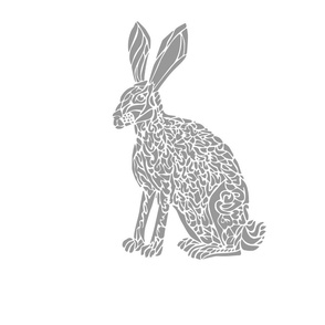 Jack Rabbit White Border