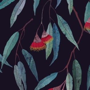 Eucalyptus leaves and flowers