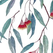 Eucalyptus_pattern_flowers_2_shop_thumb
