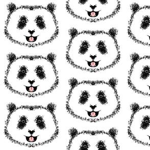 Panda, white background